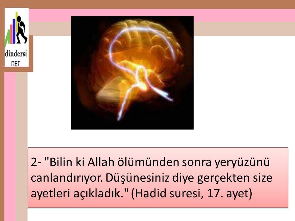 2- Bilin ki Allah ölümünden sonra yeryüzünü canlandırıyor.