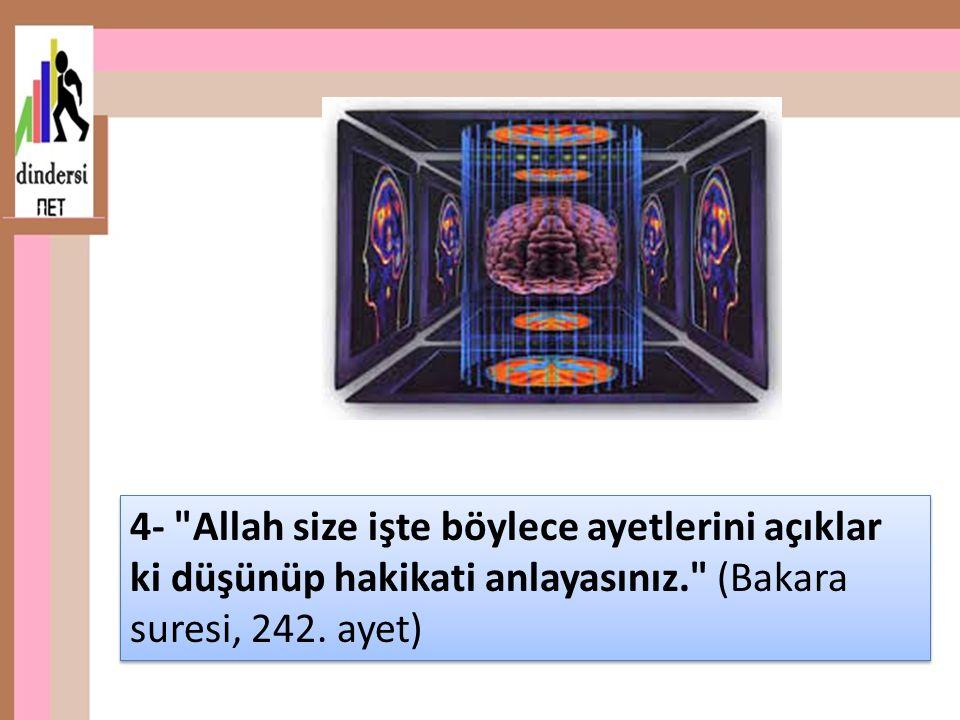 4- Allah size işte böylece ayetlerini açıklar ki düşünüp hakikati anlayasınız. (Bakara suresi, 242.