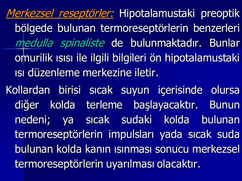 Merkezsel reseptörler: Hipotalamustaki preoptik bölgede bulunan termoreseptörlerin benzerleri medulla spinaliste de bulunmaktadır.