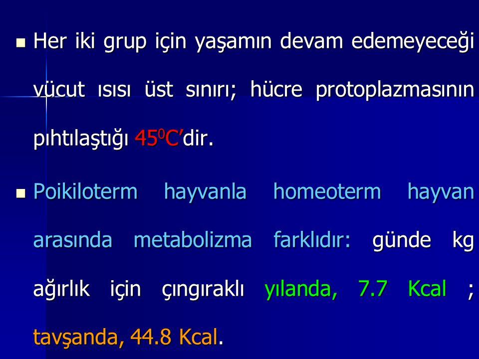 Her iki grup için yaşamın devam edemeyeceği vücut ısısı üst sınırı; hücre protoplazmasının pıhtılaştığı 45 0 C'dir.