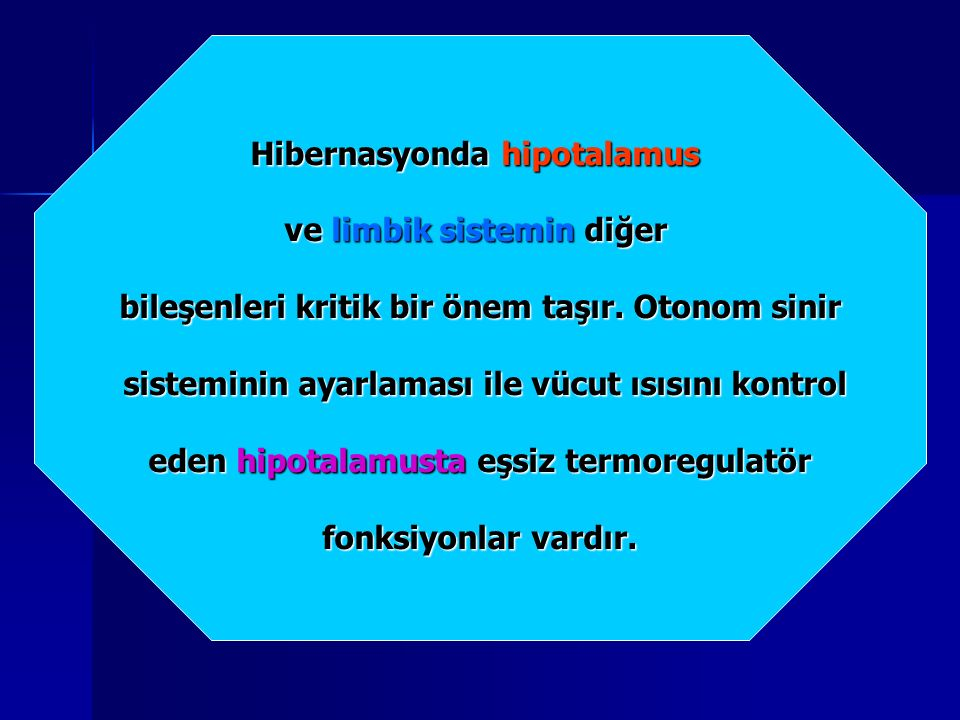 Hibernasyonda hipotalamus ve limbik sistemin diğer bileşenleri kritik bir önem taşır.