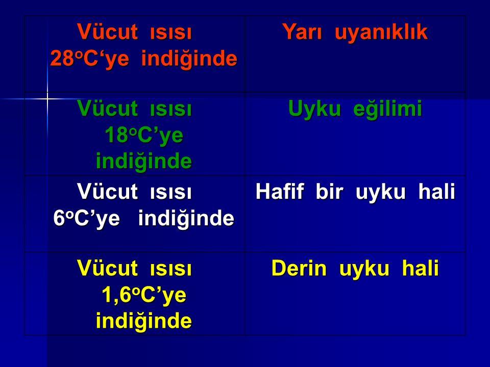 Vücut ısısı 28 o C'ye indiğinde Yarı uyanıklık Vücut ısısı 18 o C'ye indiğinde Uyku eğilimi Vücut ısısı 6 o C'ye indiğinde Hafif bir uyku hali Vücut ısısı 1,6 o C'ye indiğinde Derin uyku hali