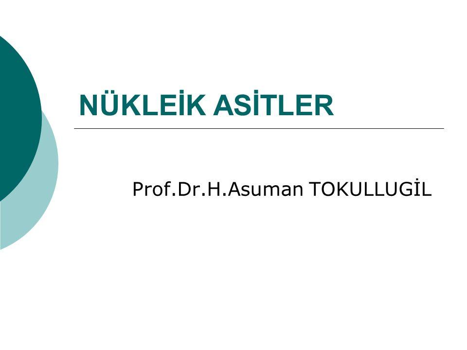 NÜKLEİK ASİTLER Prof.Dr.H.Asuman TOKULLUGİL