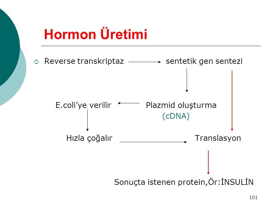 101 Hormon Üretimi  Reverse transkriptaz sentetik gen sentezi E.coli'ye verilir Plazmid oluşturma (cDNA) Hızla çoğalır Translasyon Sonuçta istenen pr