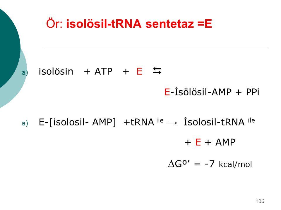 106 Ör: isolösil-tRNA sentetaz =E a) isolösin + ATP + E  E-İsölösil-AMP + PPi a) E-[isolosil- AMP] +tRNA ile → İsolosil-tRNA ile + E + AMP  Gº' = -7