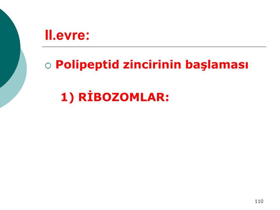 110 II.evre:  Polipeptid zincirinin başlaması 1) RİBOZOMLAR: