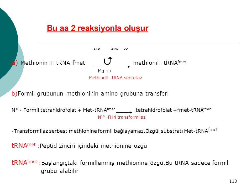 113 Bu aa 2 reaksiyonla oluşur ATP AMP + PP a) Methionin + tRNA fmet  methionil- tRNA fmet Mg ++ Methionil –tRNA sentetaz b)Formil grubunun methionil