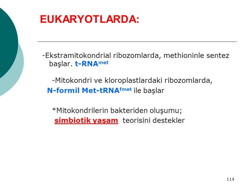 114 EUKARYOTLARDA: -Ekstramitokondrial ribozomlarda, methioninle sentez başlar. t-RNA met -Mitokondri ve kloroplastlardaki ribozomlarda, N-formil Met-