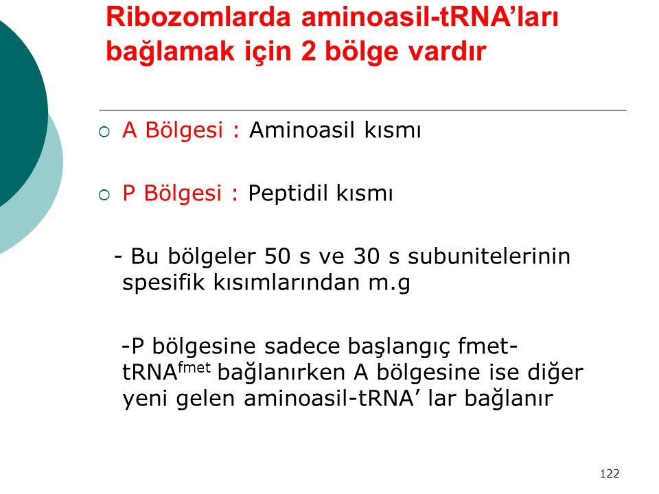 122 Ribozomlarda aminoasil-tRNA'ları bağlamak için 2 bölge vardır  A Bölgesi : Aminoasil kısmı  P Bölgesi : Peptidil kısmı - Bu bölgeler 50 s ve 30