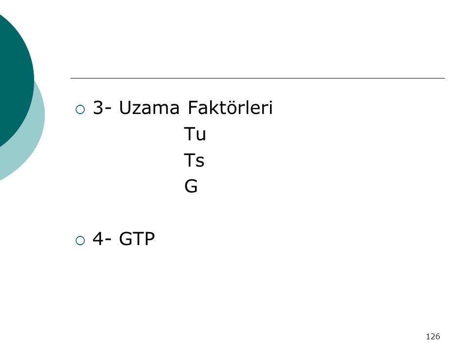 126  3- Uzama Faktörleri Tu Ts G  4- GTP