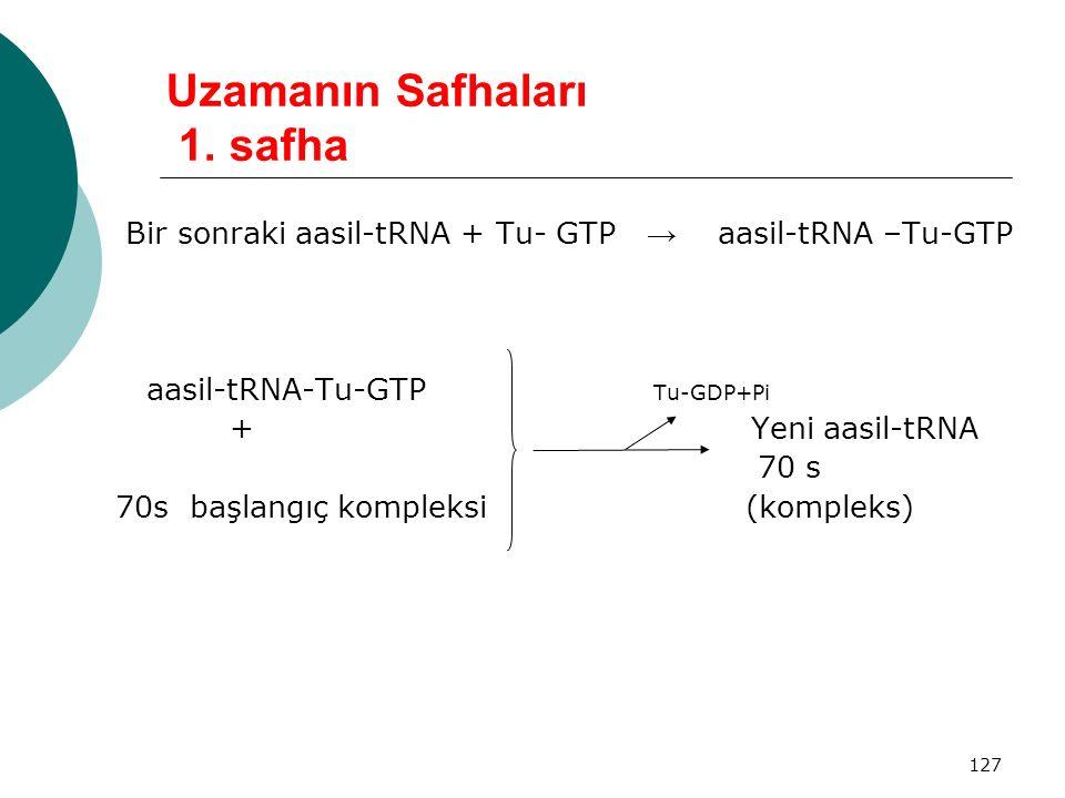 127 Uzamanın Safhaları 1. safha Bir sonraki aasil-tRNA + Tu- GTP → aasil-tRNA –Tu-GTP aasil-tRNA-Tu-GTP Tu-GDP+Pi + Yeni aasil-tRNA 70 s 70s başlangıç
