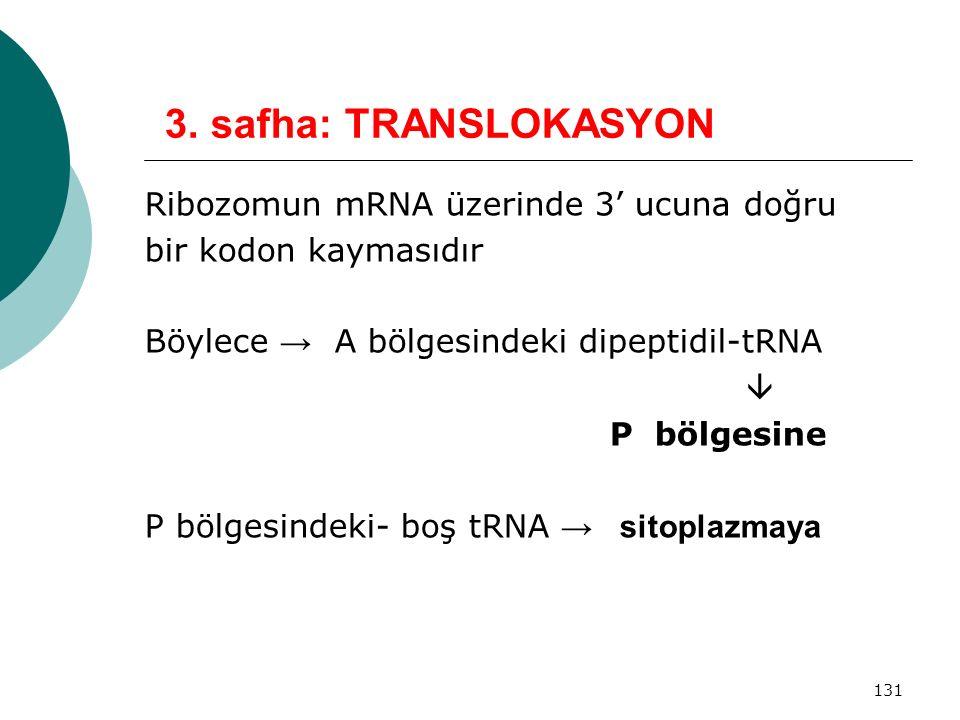 131 3. safha: TRANSLOKASYON Ribozomun mRNA üzerinde 3' ucuna doğru bir kodon kaymasıdır Böylece → A bölgesindeki dipeptidil-tRNA  P bölgesine P bölge