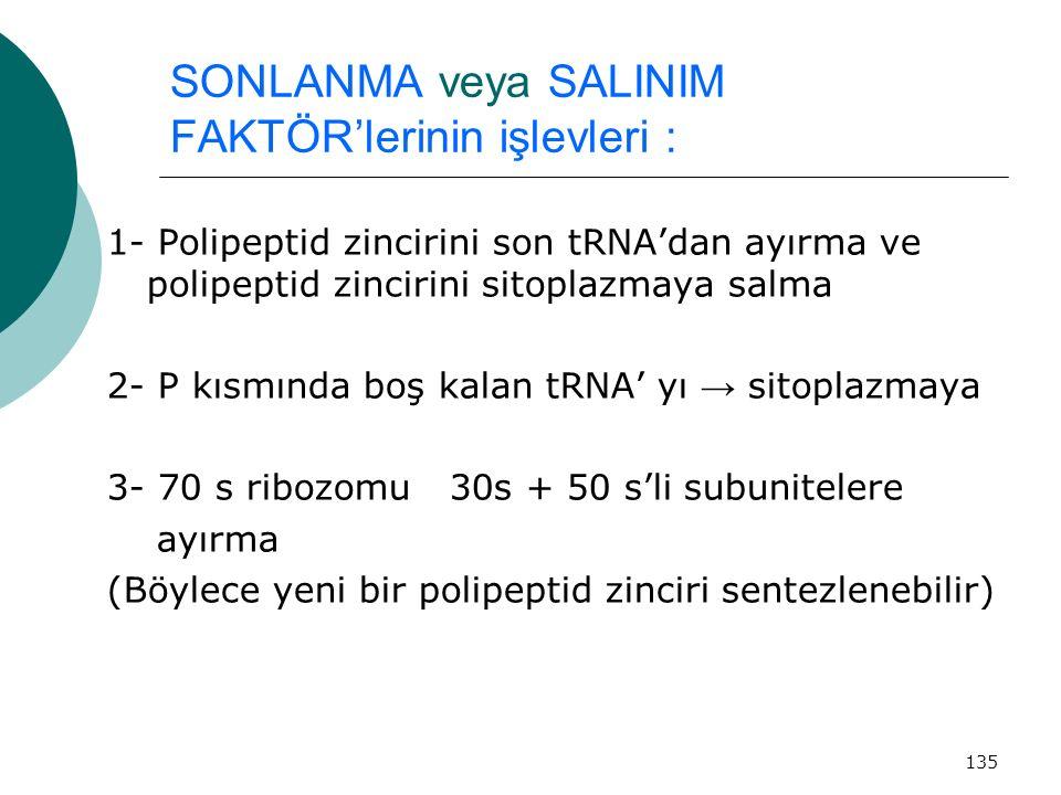 135 SONLANMA veya SALINIM FAKTÖR'lerinin işlevleri : 1- Polipeptid zincirini son tRNA'dan ayırma ve polipeptid zincirini sitoplazmaya salma 2- P kısmı