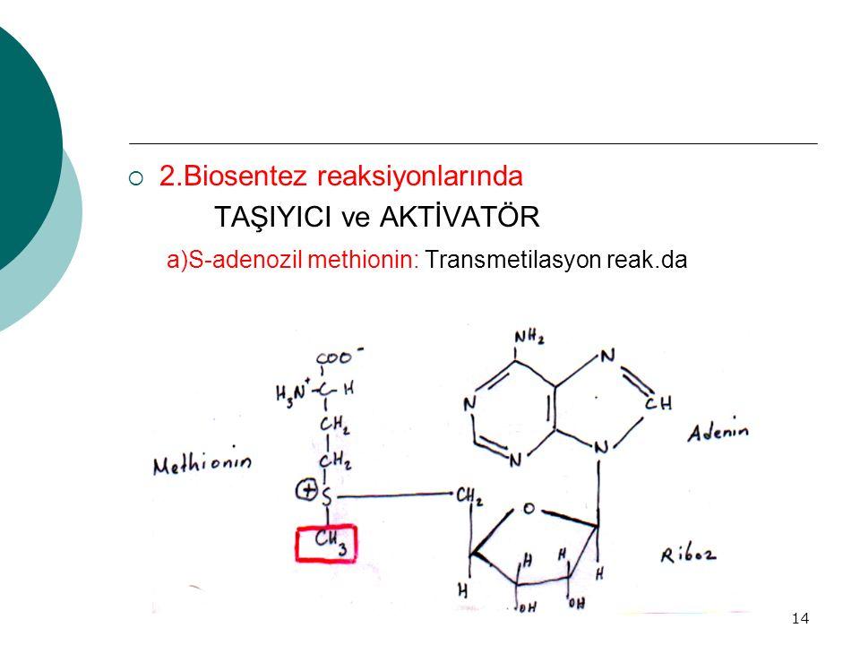 14  2.Biosentez reaksiyonlarında TAŞIYICI ve AKTİVATÖR a)S-adenozil methionin: Transmetilasyon reak.da