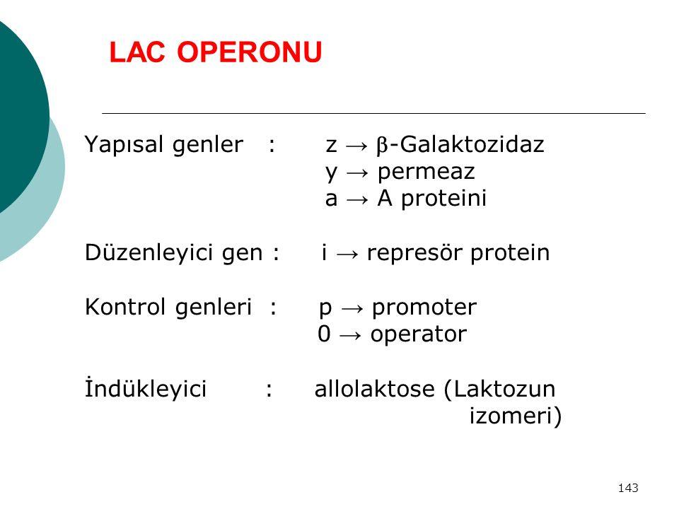 143 LAC OPERONU Yapısal genler : z → -Galaktozidaz y → permeaz a → A proteini Düzenleyici gen : i → represör protein Kontrol genleri : p → promoter 0
