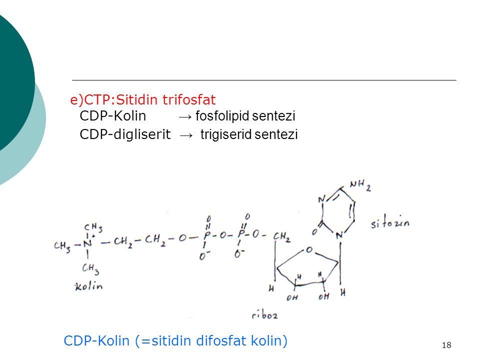 18 e)CTP:Sitidin trifosfat CDP-Kolin → fosfolipid sentezi CDP-digliserit → trigiserid sentezi CDP-Kolin (=sitidin difosfat kolin)