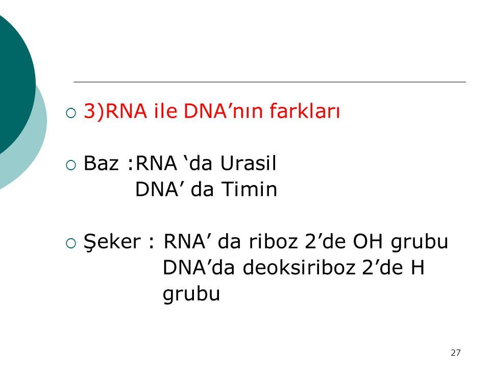 27  3)RNA ile DNA'nın farkları  Baz :RNA 'da Urasil DNA' da Timin  Şeker : RNA' da riboz 2'de OH grubu DNA'da deoksiriboz 2'de H grubu