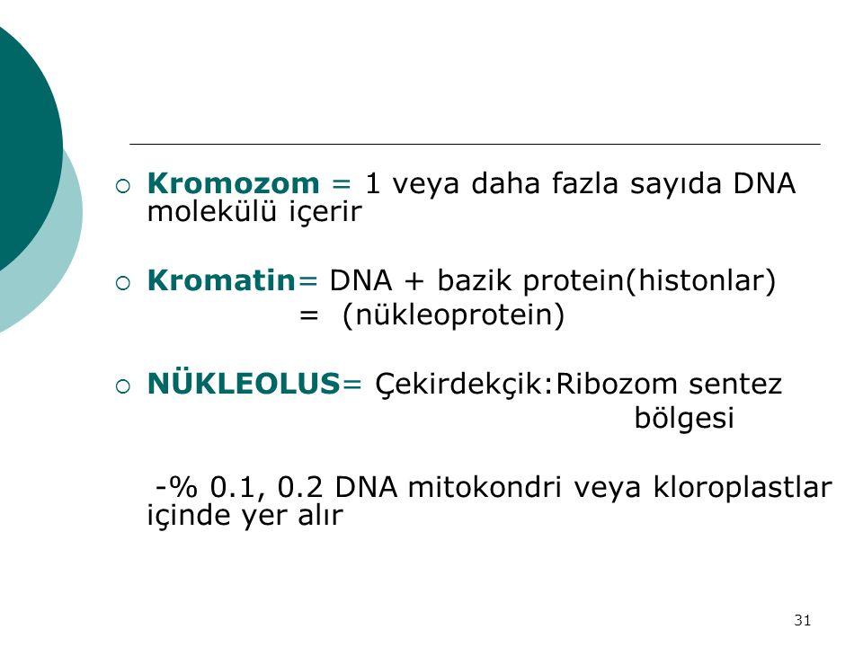 31  Kromozom = 1 veya daha fazla sayıda DNA molekülü içerir  Kromatin= DNA + bazik protein(histonlar) = (nükleoprotein)  NÜKLEOLUS= Çekirdekçik:Rib