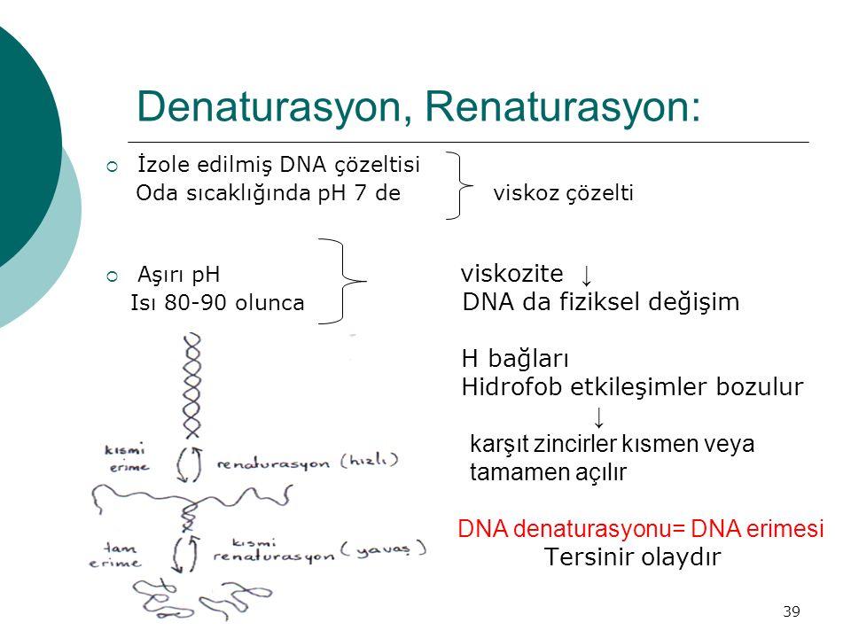 39 Denaturasyon, Renaturasyon:  İzole edilmiş DNA çözeltisi Oda sıcaklığında pH 7 de viskoz çözelti  Aşırı pH viskozite ↓ Isı 80-90 olunca DNA da fi