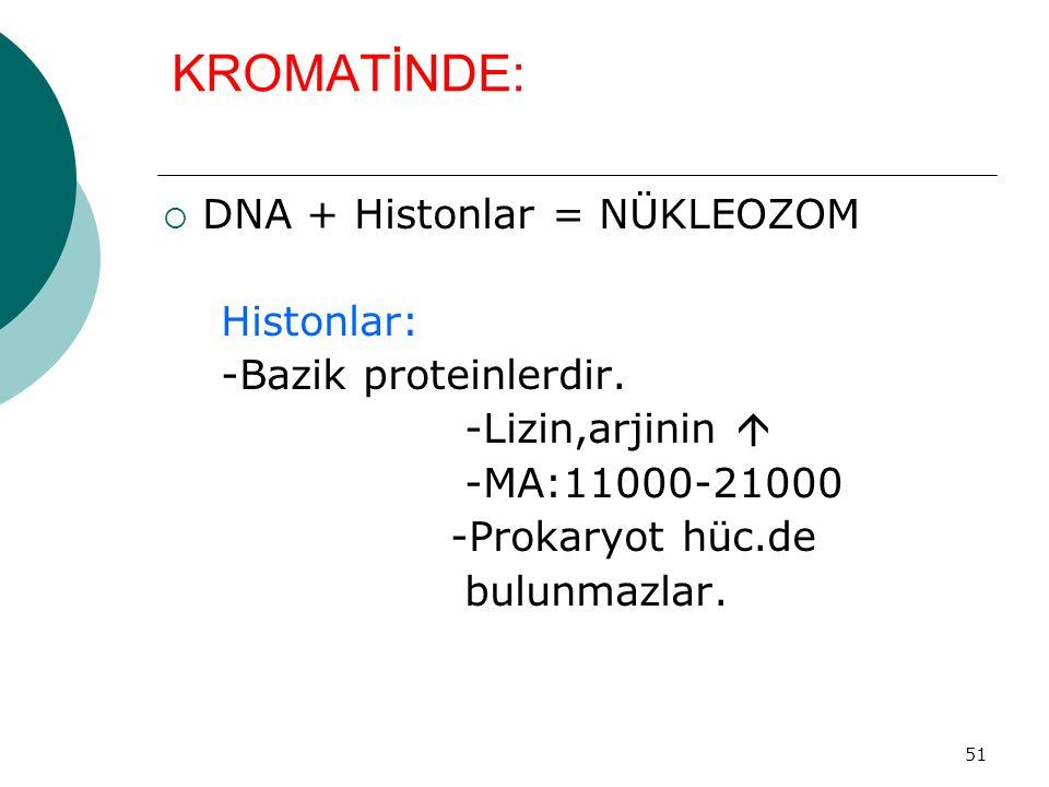 51 KROMATİNDE:  DNA + Histonlar = NÜKLEOZOM Histonlar: -Bazik proteinlerdir. -Lizin,arjinin  -MA:11000-21000 -Prokaryot hüc.de bulunmazlar.