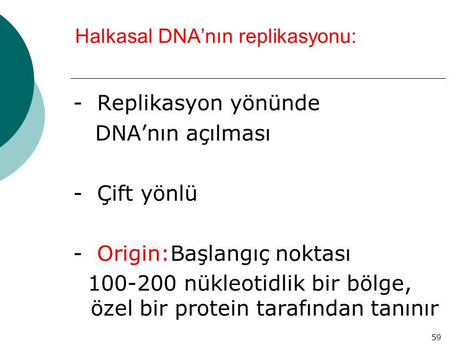 59 Halkasal DNA'nın replikasyonu: - Replikasyon yönünde DNA'nın açılması - Çift yönlü - Origin:Başlangıç noktası 100-200 nükleotidlik bir bölge, özel