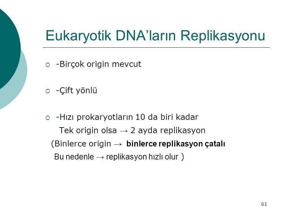 61 Eukaryotik DNA'ların Replikasyonu  -Birçok origin mevcut  -Çift yönlü  -Hızı prokaryotların 10 da biri kadar Tek origin olsa → 2 ayda replikasyo