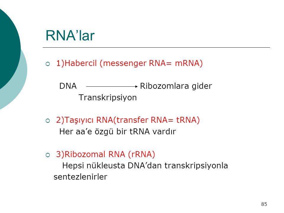 85 RNA'lar  1)Habercil (messenger RNA= mRNA) DNA Ribozomlara gider Transkripsiyon  2)Taşıyıcı RNA(transfer RNA= tRNA) Her aa'e özgü bir tRNA vardır