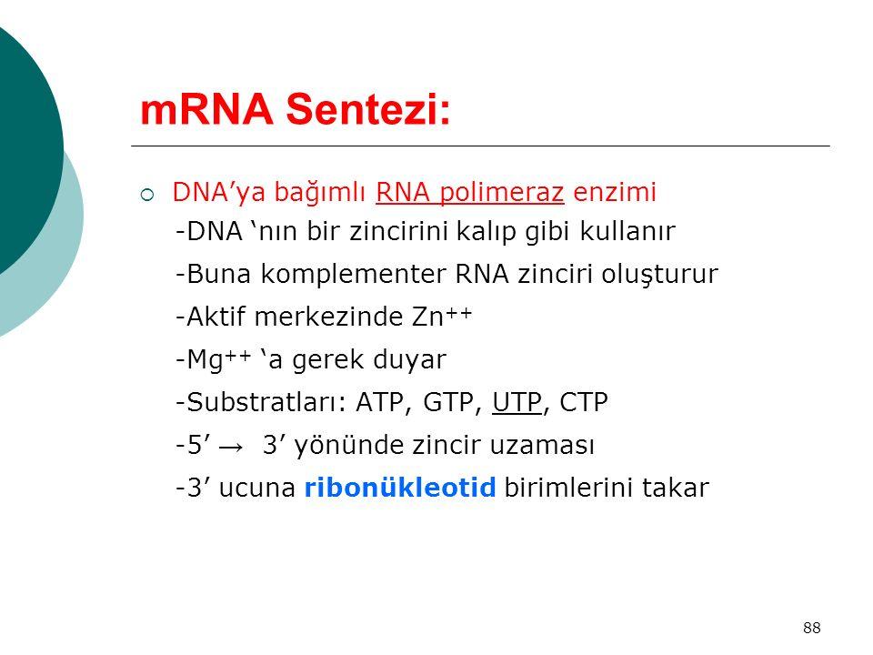 88 mRNA Sentezi:  DNA'ya bağımlı RNA polimeraz enzimi -DNA 'nın bir zincirini kalıp gibi kullanır -Buna komplementer RNA zinciri oluşturur -Aktif mer