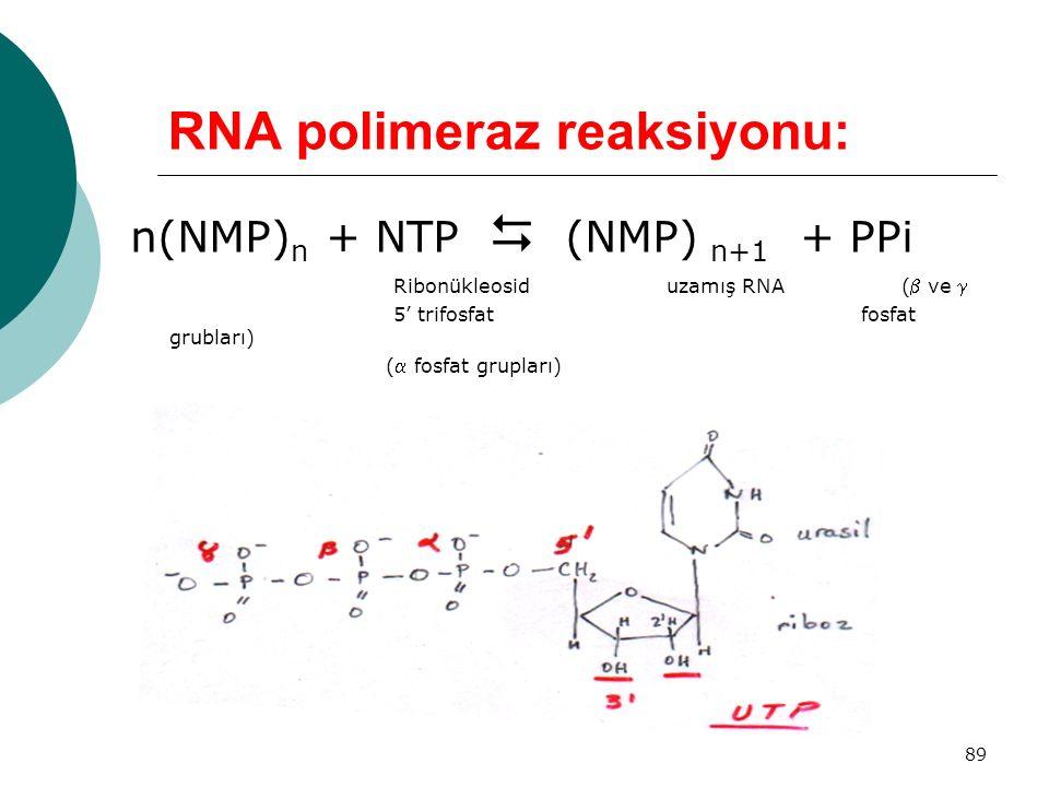 89 RNA polimeraz reaksiyonu: n(NMP) n + NTP  (NMP) n+1 + PPi Ribonükleosid uzamış RNA ( ve  5' trifosfat fosfat grubları) ( fosfat grupları)