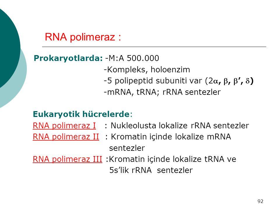 92 RNA polimeraz : Prokaryotlarda: -M:A 500.000 -Kompleks, holoenzim -5 polipeptid subuniti var (2, , ', ) -mRNA, tRNA; rRNA sentezler Eukaryotik