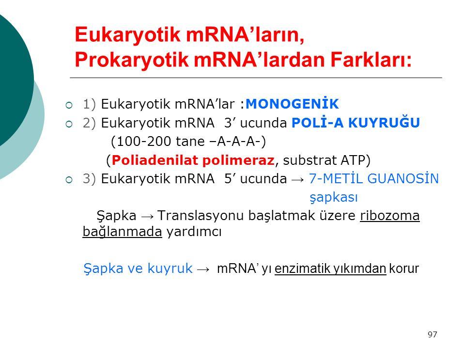 97 Eukaryotik mRNA'ların, Prokaryotik mRNA'lardan Farkları:  1) Eukaryotik mRNA'lar :MONOGENİK  2) Eukaryotik mRNA 3' ucunda POLİ-A KUYRUĞU (100-200