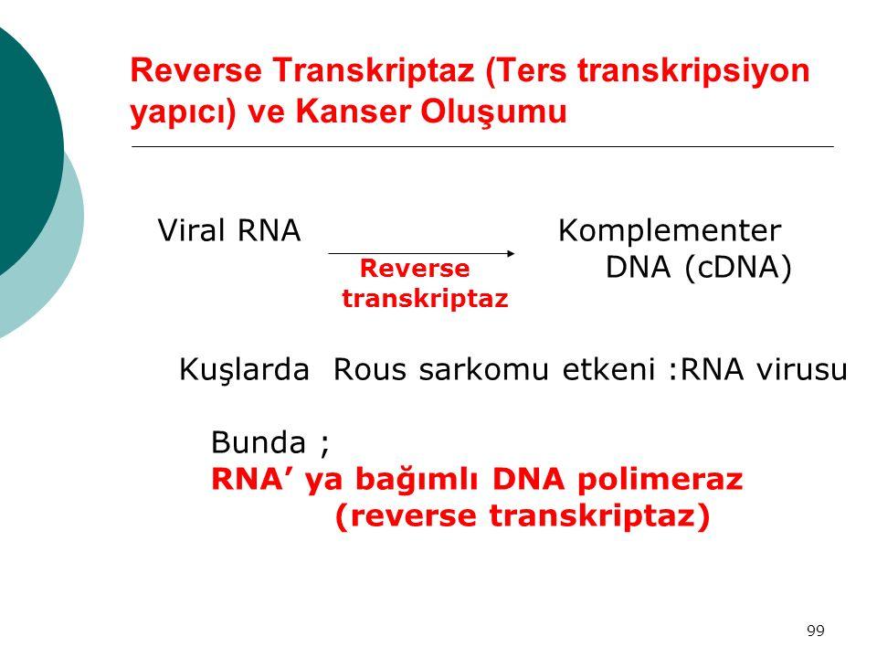 99 Reverse Transkriptaz (Ters transkripsiyon yapıcı) ve Kanser Oluşumu Viral RNA Komplementer Reverse DNA (cDNA) transkriptaz Kuşlarda Rous sarkomu et