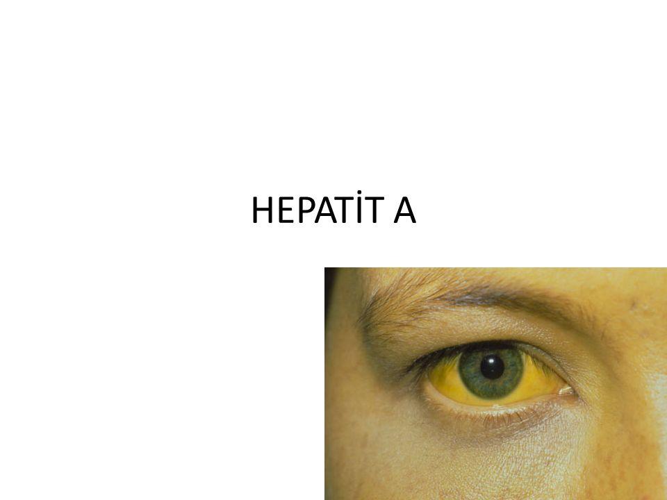 Hepatit A KARACİĞERDE İLTİHAPLANMAYA YOL AÇAN BİR HASTALIKTIR