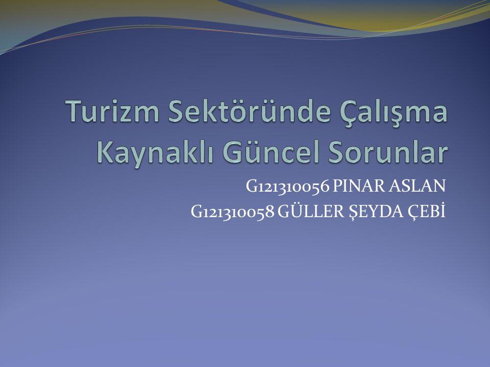 G121310056 PINAR ASLAN G121310058 GÜLLER ŞEYDA ÇEBİ
