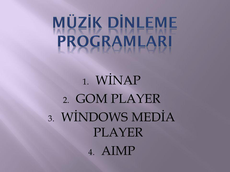 Windows kurulumuyla birlikte gelen müzik oynatıcı programdır.