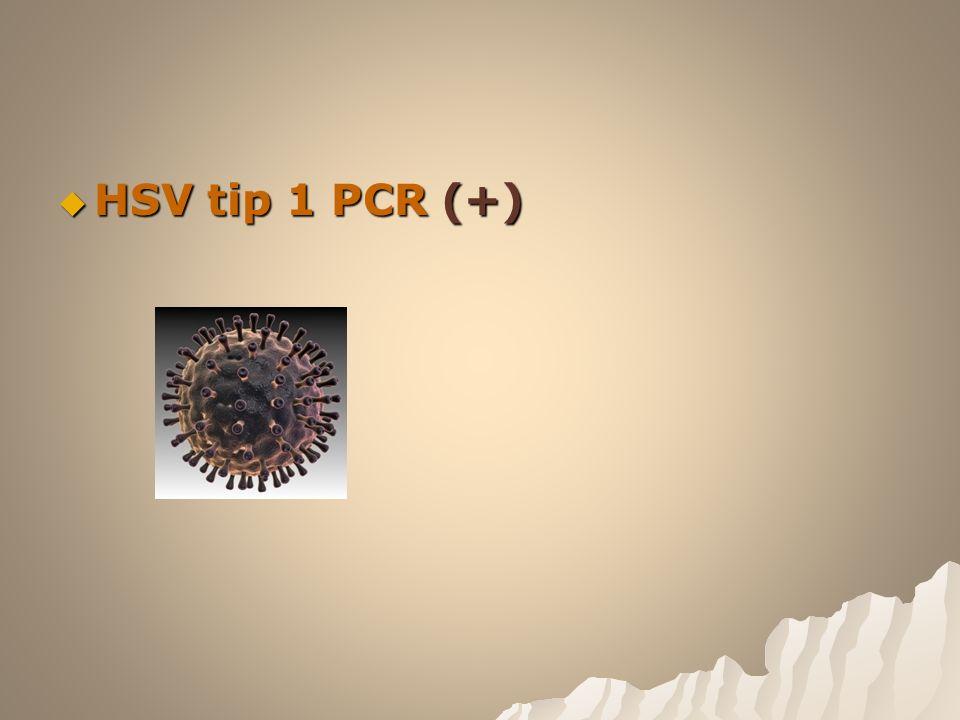  HSV tip 1 PCR (+)