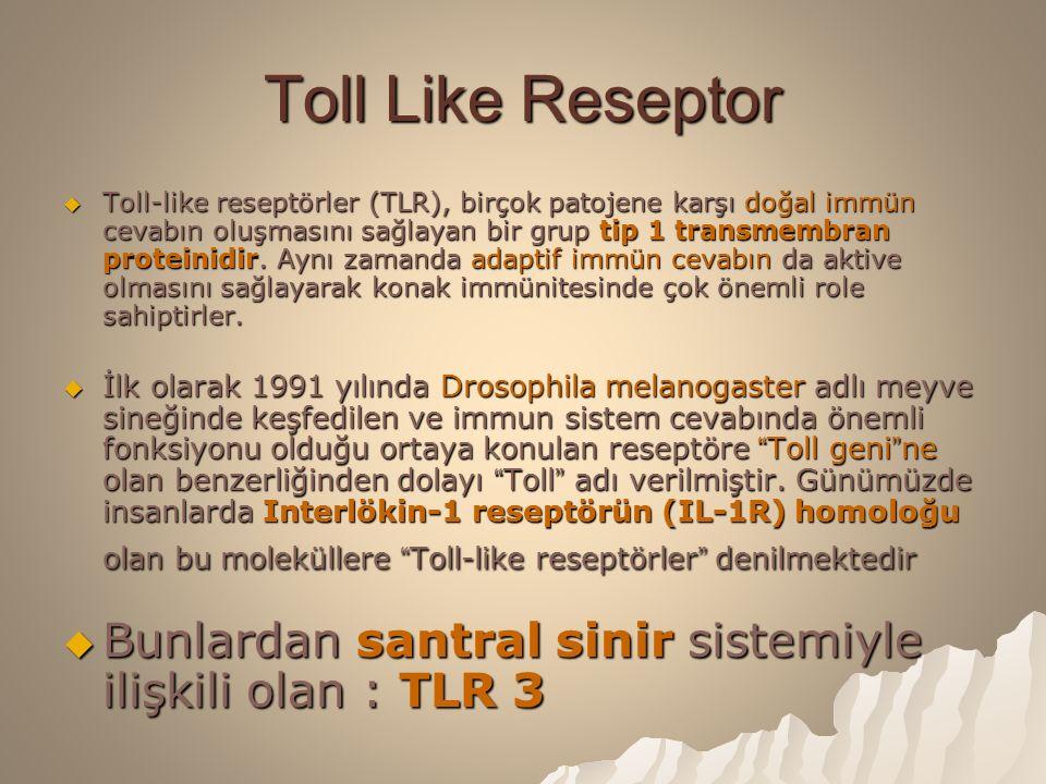Toll Like Reseptor  Toll-like reseptörler (TLR), birçok patojene karşı doğal immün cevabın oluşmasını sağlayan bir grup tip 1 transmembran proteinidir.
