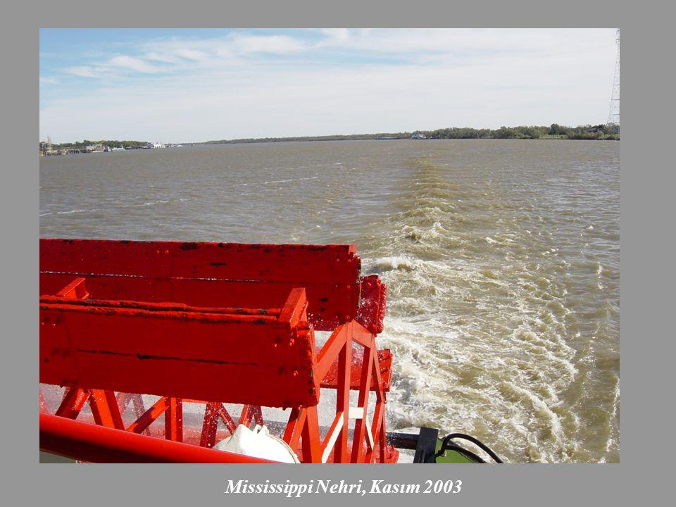 Mississippi Nehri, Kasım 2003