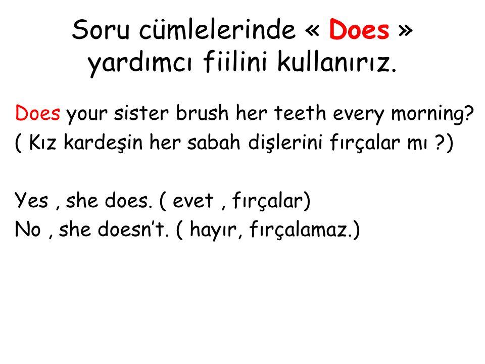 Soru cümlelerinde « Does » yardımcı fiilini kullanırız. Does your sister brush her teeth every morning? ( Kız kardeşin her sabah dişlerini fırçalar mı