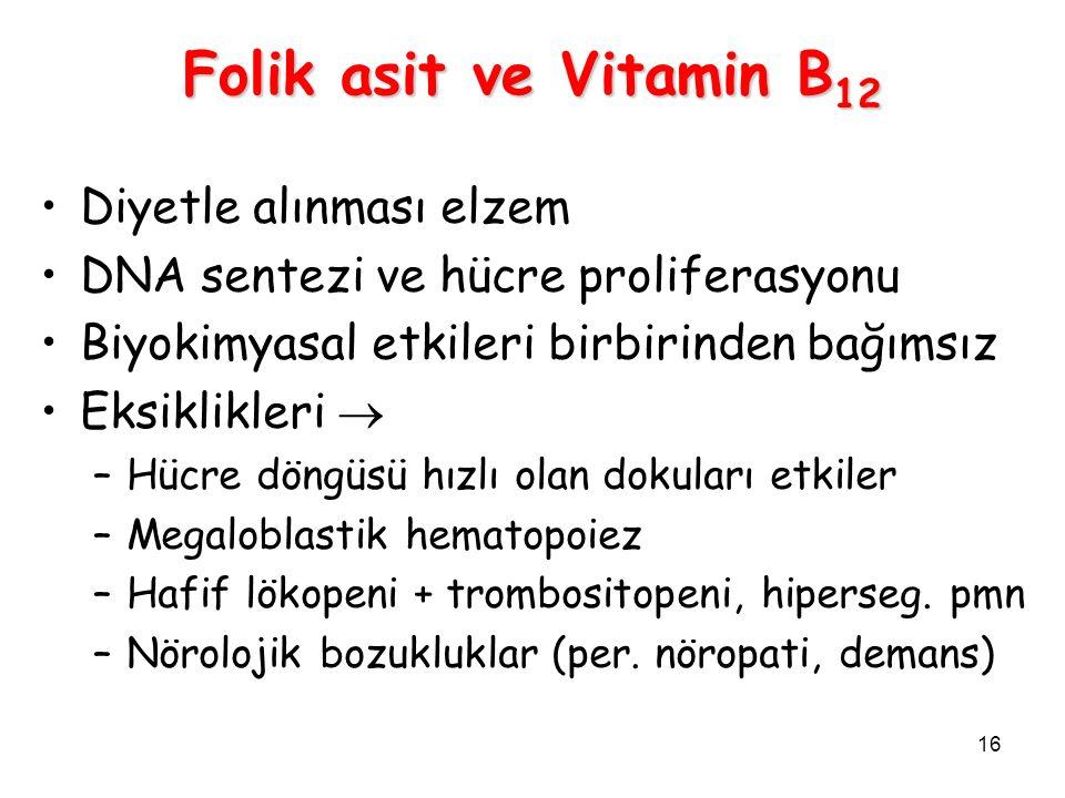 16 Folik asit ve Vitamin B 12 Diyetle alınması elzem DNA sentezi ve hücre proliferasyonu Biyokimyasal etkileri birbirinden bağımsız Eksiklikleri  –Hücre döngüsü hızlı olan dokuları etkiler –Megaloblastik hematopoiez –Hafif lökopeni + trombositopeni, hiperseg.