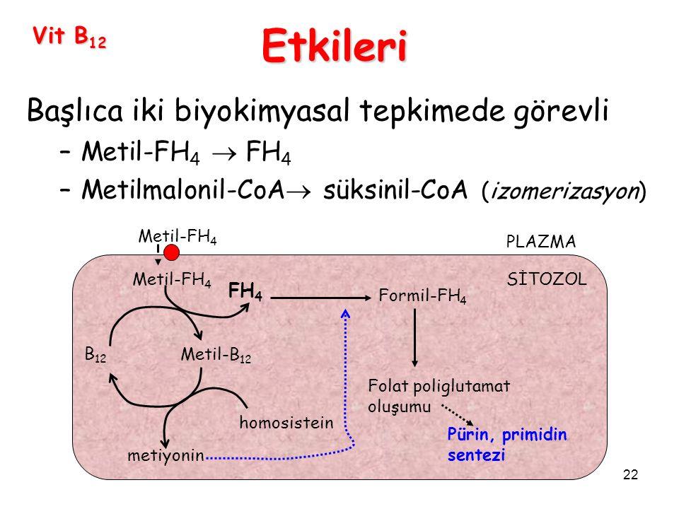 22 Vit B 12 Başlıca iki biyokimyasal tepkimede görevli –Metil-FH 4  FH 4 –Metilmalonil-CoA  süksinil-CoA (izomerizasyon) Etkileri Metil-FH 4 B 12 Metil-B 12 homosistein metiyonin FH 4 PLAZMA SİTOZOL Formil-FH 4 Folat poliglutamat oluşumu Pürin, primidin sentezi