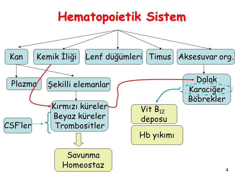 5 Anemilerin Tipleri Anemi: [Hb] kan  azalma KK boyutuHb içeriğiMikroskopik (yayma) MakrositikKarışık Hipokromik Mikrositik KK küçük Hb düşük Demir eksikliği KK büyük KK # az Normokromik Normositik KK normal Hb normal KK # az