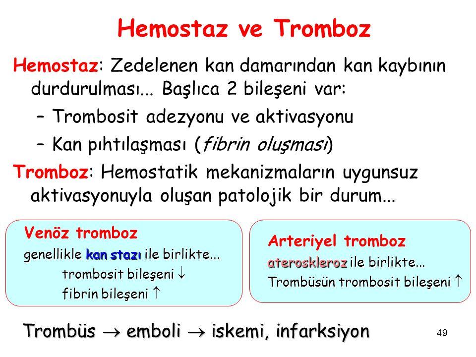 49 Hemostaz ve Tromboz Hemostaz: Zedelenen kan damarından kan kaybının durdurulması...