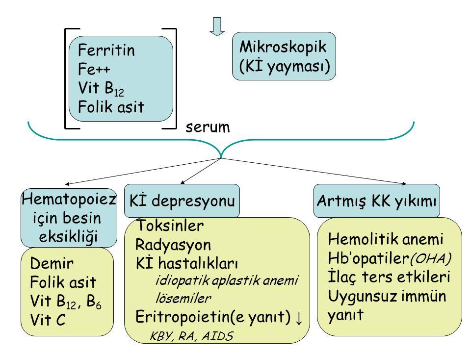 6 Ferritin Fe++ Vit B 12 Folik asit Kİ depresyonu Artmış KK yıkımı Hematopoiez için besin eksikliği Demir Folik asit Vit B 12, B 6 Vit C Toksinler Radyasyon Kİ hastalıkları idiopatik aplastik anemi lösemiler Eritropoietin(e yanıt) ↓ KBY, RA, AIDS Hemolitik anemi Hb'opatiler (OHA) İlaç ters etkileri Uygunsuz immün yanıt serum Mikroskopik (Kİ yayması)