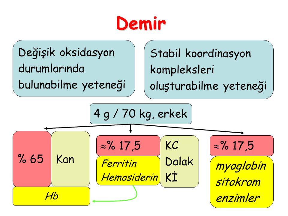 59 3.Hemofili vb.