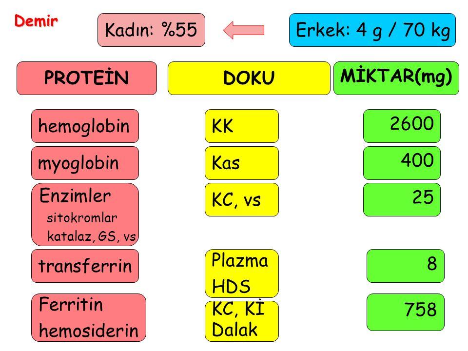 9 Demir Erkek: 4 g / 70 kg PROTEİNDOKU MİKTAR(mg) hemoglobinKK 2600 myoglobinKas 400 Enzimler sitokromlar katalaz, GS, vs KC, vs 25 transferrin Plazma HDS 8 Ferritin hemosiderin KC, Kİ Dalak 758 Kadın: %55