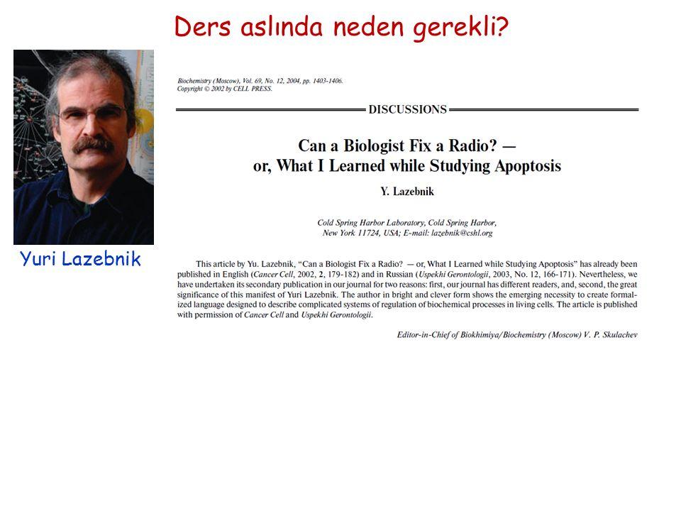 Ders aslında neden gerekli? Yuri Lazebnik