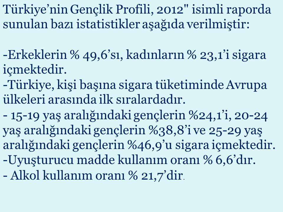 Türkiye'nin Gençlik Profili, 2012