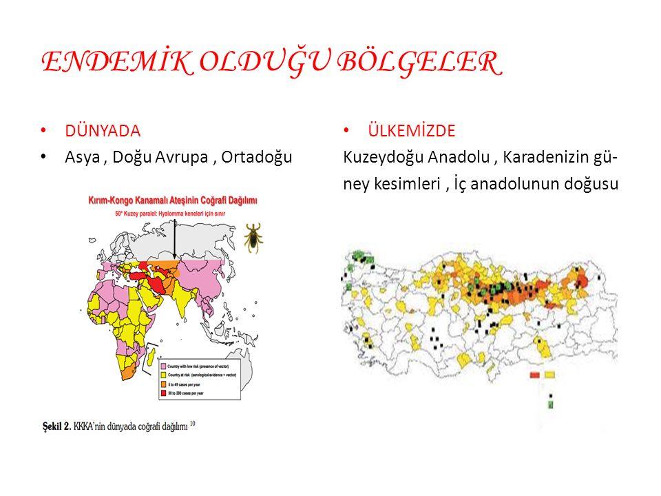 ENDEMİK OLDUĞU BÖLGELER DÜNYADA Asya, Doğu Avrupa, Ortadoğu ÜLKEMİZDE Kuzeydoğu Anadolu, Karadenizin gü- ney kesimleri, İç anadolunun doğusu
