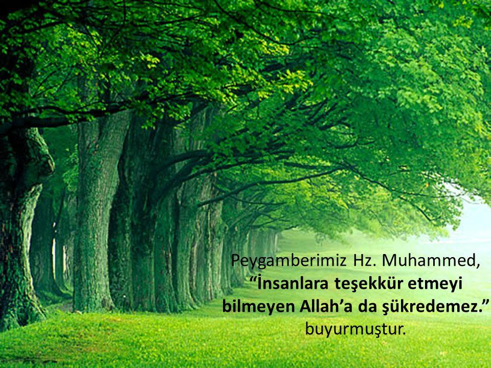"""Peygamberimiz Hz. Muhammed, """"İnsanlara teşekkür etmeyi bilmeyen Allah'a da şükredemez."""" buyurmuştur."""